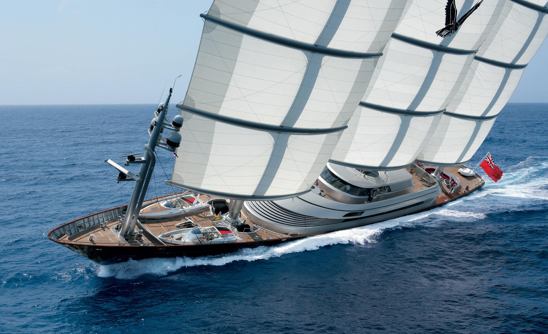Halcón Maltés