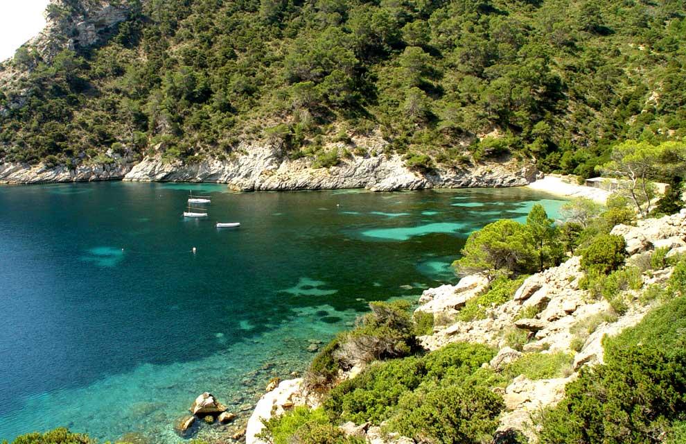 a_Cala-Llentrisc-a Alquiler de barcos veleros catamaranes yates lanchas motoras alquiler de barcos Ibiza y Formentera