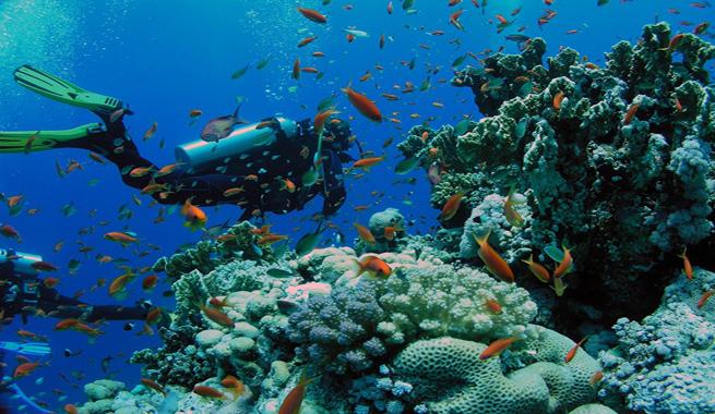 Alquiler-Catamaranes-Ibiza-Formentera jpg